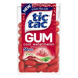 "Professional Paint Brush 3"" (TS-G673)"