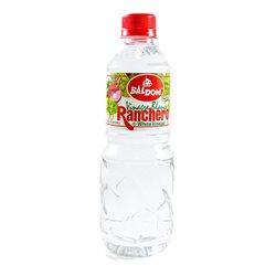 Blow Pop Sour Apple - 48ct