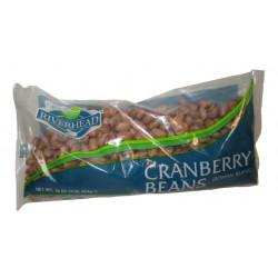 Plastic Cups, Red 16 oz. - 48 Pack/16pcs